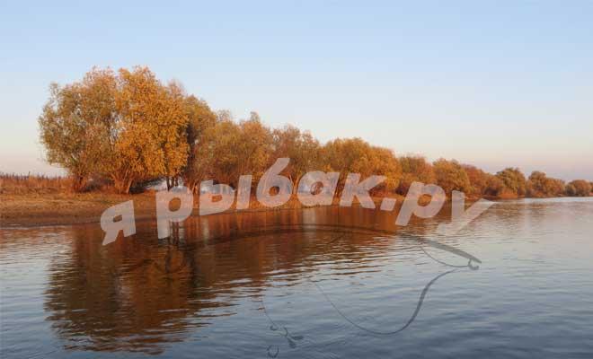 Осенняя природа на реке