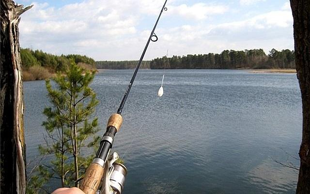 Удилище для ловли на сбирулино