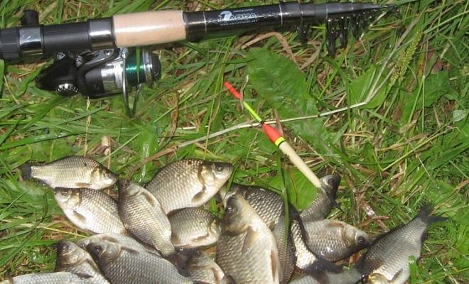 какие крючки использовать для ловли карася