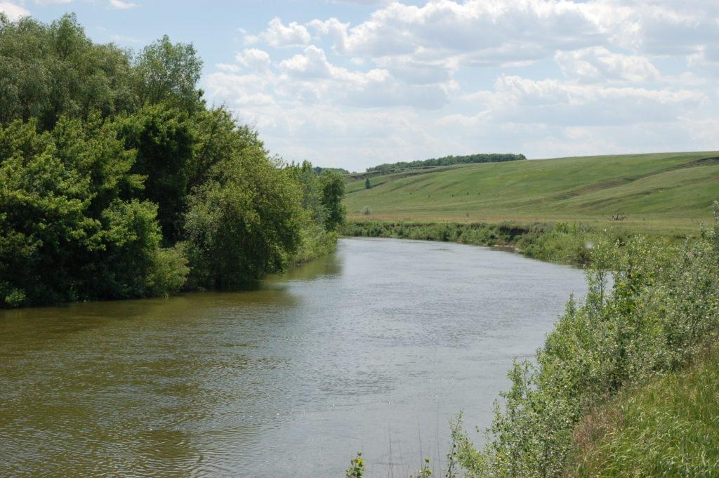 Река для рыбалки на сома